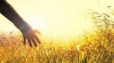 Kaip sąmoningai išjausti būtį? Kvietimas gyventi